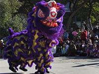 Les secrets de la danse du lion du Nouvel An chinois